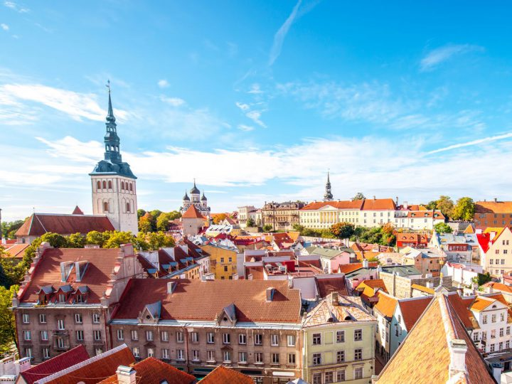 11+ Angel Investors Estonia for your Startup