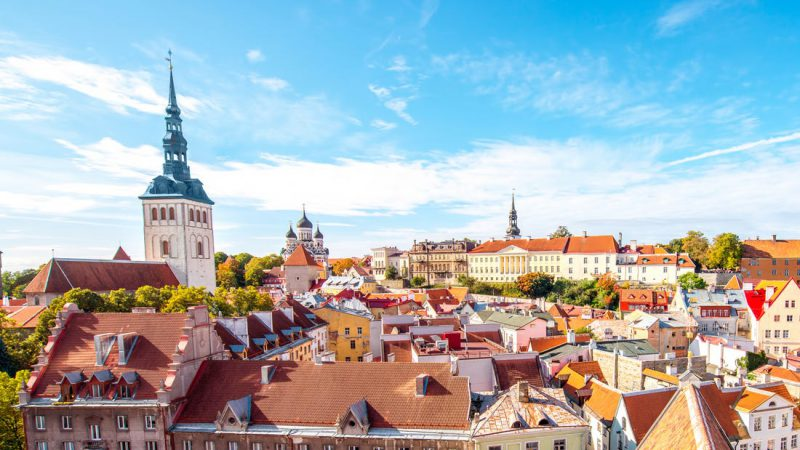 12+ Angel Investors Estonia, you have to know about!